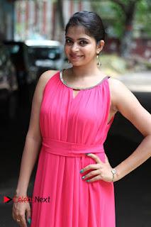 Actress Gayatri Rema Pictures in Pink Dress  0006.jpg