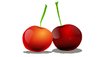 cherry clip art designs