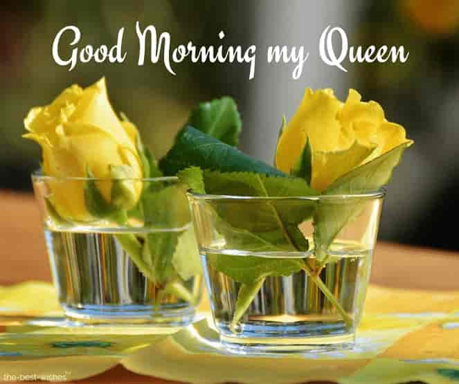 good morning my queen image