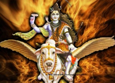 Hindu God harihara shiva picture