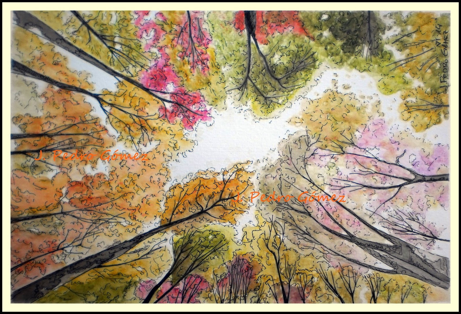 plumilla, acuarela, dibujo, perspectiva, arboles