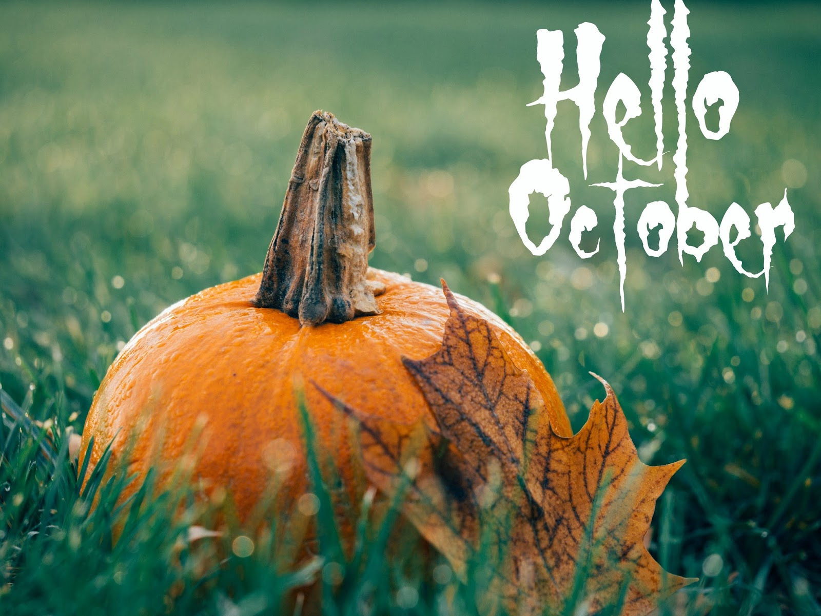 Formidable Joy | Formidable Joy Blog | Hello October | SUM41 | Train To Busan | The Girl On The Train | Debut Magazine