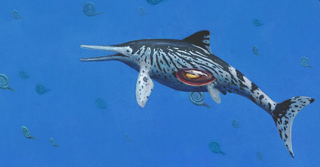 Largest Ichthyosaurus was pregnant mother