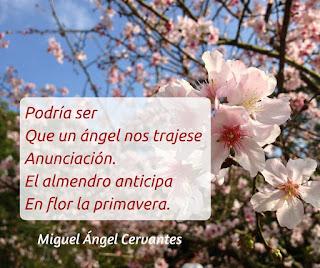 blogdepoesia-poesia-miguel-angel-cervantes-almendro