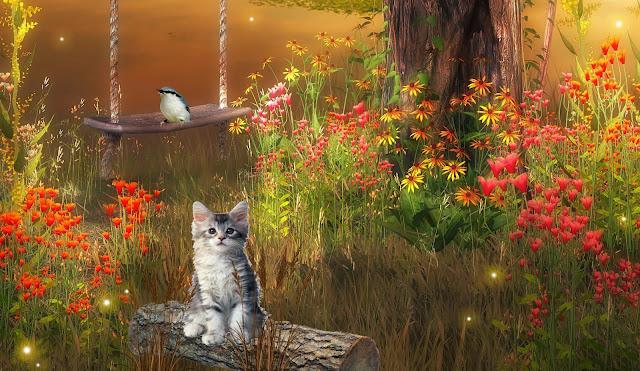 Cat in Dreamy World 3D Digital Wallpaper