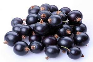 Manfaat Acai Berry untuk Mata