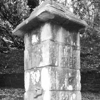 gatepost in Witton Wood