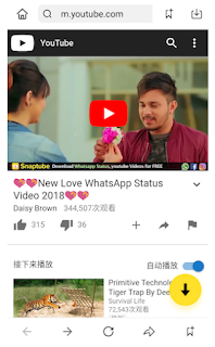 Cara Download Status Video WhatsApp Video Unlimited and Free