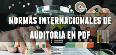 Normas Internacionales de Auditoría PDF