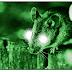 Cientistas criam ratos com visão noturna