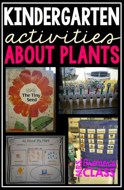 Spring theme: Learning About Plants in Kindergarten