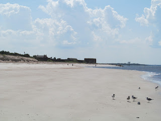 Fort Clinch Beach Shark tooth hunting Amelia Island