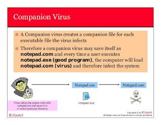 jenis jenis virus komputer
