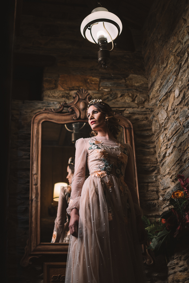 editorial la novia del palomar - palacio de canedo leon