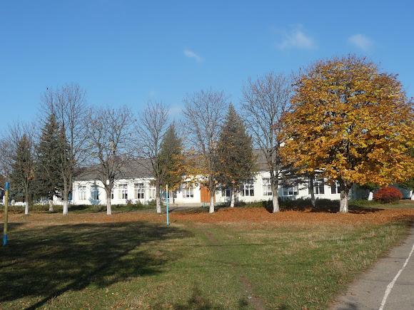 Тяпче. Сільська школа і спортивний майданчик
