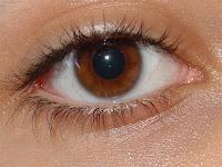 Mata Sehat - Makanan Penyehat mata