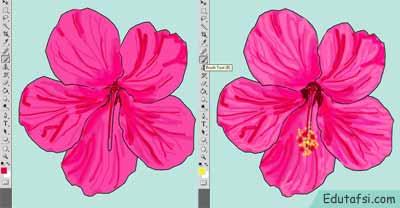 Membuat gambar bunga kembang sepatu dengan memakai photoshop CARA MENGGAMBAR BUNGA KEMBANG SEPATU DENGAN PEN TOOL PHOTOSHOP