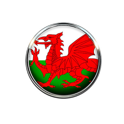 Welsh flag circle pic