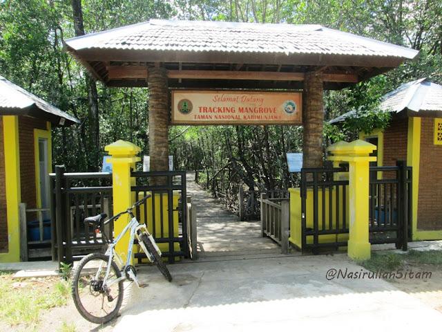 Pintu Gerbang Tracking Mangrove