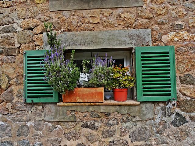 okiennice, kwiaty, okno Majorka