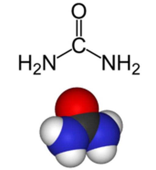 Rumus Kimia Urea