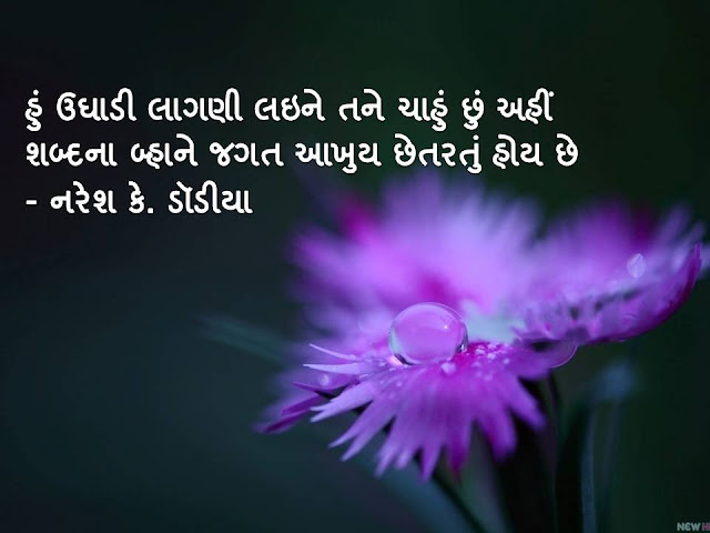 हुं उघाडी लागणी लइने तने चाहुं छुं अहीं Gujarati Sher By Naresh K.. Dodia