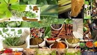 Ayurveda, son role pour la santé