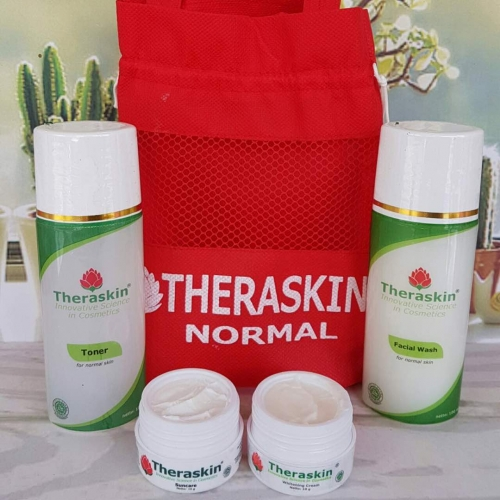 Paket Theraskin Cream Normal Bpom