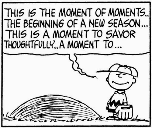 Charlie Brown's Non-Holiday Specials: Announcing Baseball