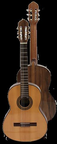 Volver a Guitarras Clásicas