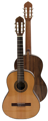 Ver Guitarra Clásica - Modelo B5