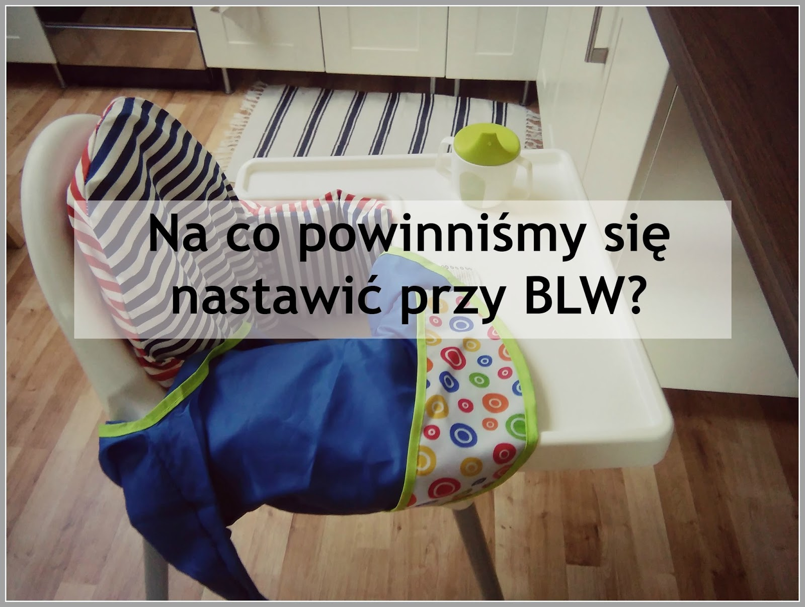 Na co nastawić się przy BLW?, BLW, rozszerzanie diety