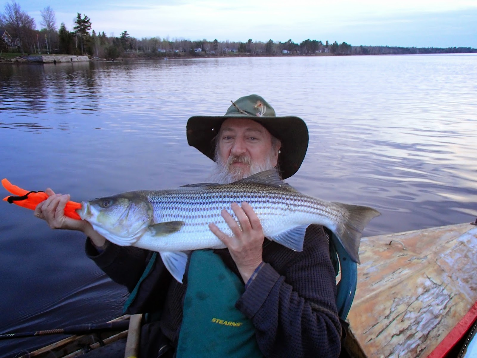 Gear up for stripers for Fishing for stripers