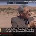 فيديو: الاقتصاد والناس- المغرب.. تجربة رائدة بإنتاج الطاقة المتجددة