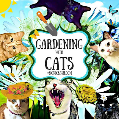 Gardening with Cats ©BionicBasil®