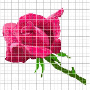 Stickvorlagenmuster Rote Rose 1