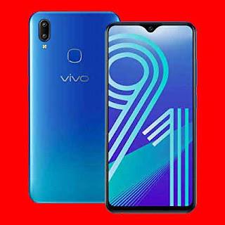 Vivo का Y91, 3 जीबी रैम वेरिएंट हुआ लॉन्च भारत में, कीमत जानें