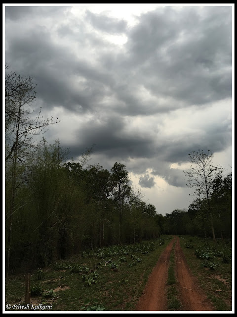 Monsoon cloud over Tadoba