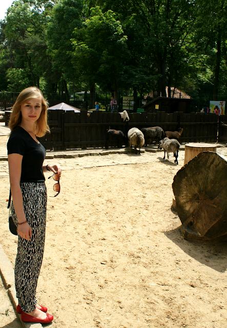 lodzkie-zoo