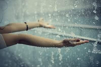 Frumos din picuri de ploaie
