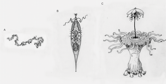 These illustrations represent different levels of adaptive complexity we might imagine when thinking about aliens. (a) A simple replicating molecule, with no apparent design. This may or may not undergo natural selection. (b) An incredibly simple, cell-like entity. Even something this simple has sufficient contrivance of parts that it must undergo natural selection. (c) An alien with many intricate parts working together is likely to have undergone major transitions. Image credit: Helen.S.Cooper