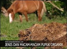 Jenis dan Macam Macam pupuk Organik yang bermanfaat bagi tanaman