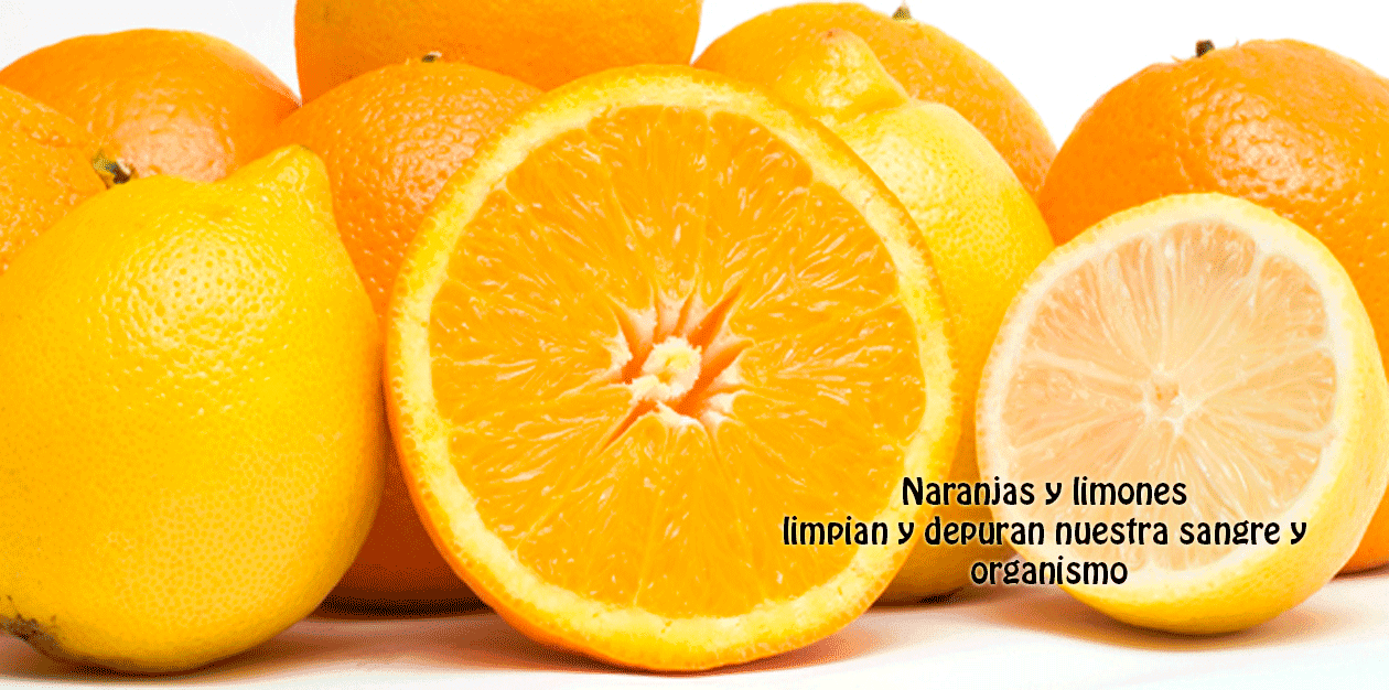 Naranjas y limones limpian y depuran nuestra sangre y  organismo, limpian y depuran nuestra sangre y nuestro organismo ... Tanto las naranjas como los limones son buenos para reducir la presión arterial y el estrés .