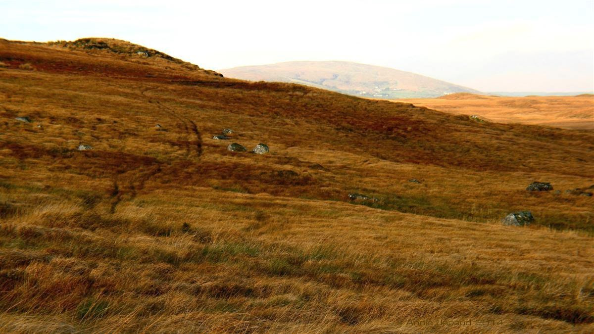 colourful landscape from Connemara