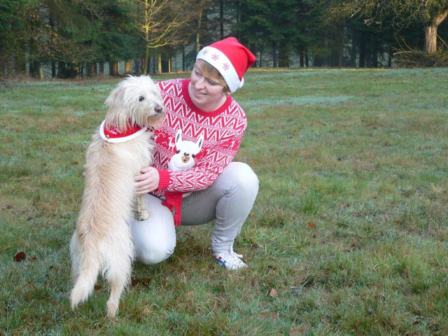 Weihnachten Weihnachtsgrüße Weihnachtsfrau Hund Weihnachtspulli