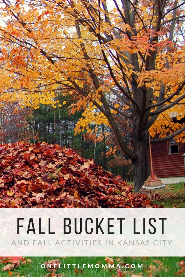 The Ultimate Fall Bucket List, Fall Activities to do in Kansas City
