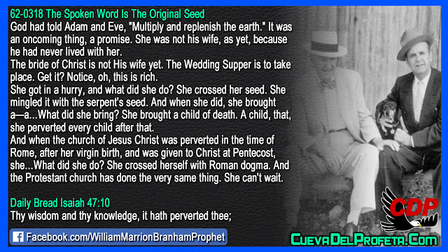 She crossed her seed with the serpent seed - William Branham Quotes