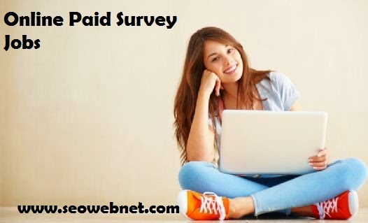 Legit Paid Online Survey Site List Which Pay For Survey Work
