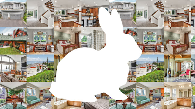 rabbit photo real estate mls photo $99 northern lens photography realtor homes ak