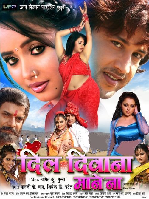 Deewana 2 Bhojpuri Movie